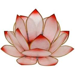 Lotus Levée du Soleil - Rosé