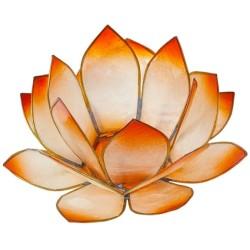 Lotus Lever du Soleil - Mandarine