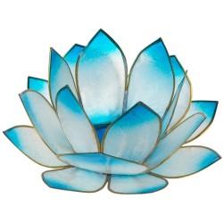Lotus Lever du Soleil - Turquoise