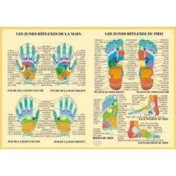 Zone réflexe main pied