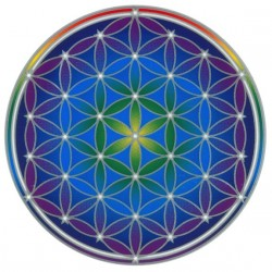 Autocollant Attrape Soleil : Fleur de Vie - Flower of Life Mandala
