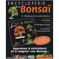 Art du Bonsaï - Encyclopédie