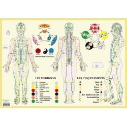 Méridiens et 5 éléments