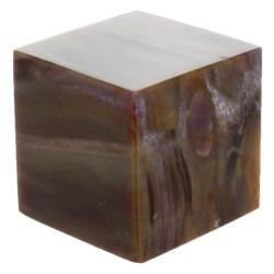Cube Bois Fossile/Silicifié