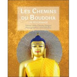 Les Chemins du Bouddha - Un pèlerinage