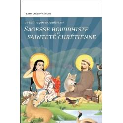Sagesse bouddhiste et sainteté chrétienne - Un clair rayon de lumière sur