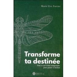 Transforme ta destinée - Tout ce qu'il faut comprendre pour passer à l'action