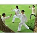 TAI CHI QI GONG ARTS MARTIAUX